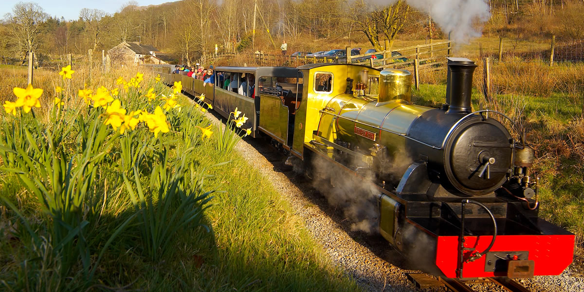 Ratty_Railway02